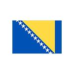 https://www.versusprevodi.com/wp-content/uploads/2020/11/bosnian.png